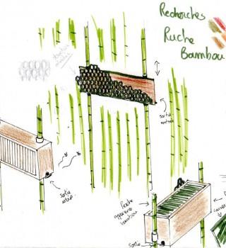 """Un projet de ruche pour LPE. Élèves du Lycée Borda de Dax, projet """"Bee Creative""""."""